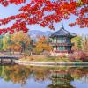 Tour Du Lịch Hàn Quốc 6 Ngày 5 Đêm từ Hà Nội
