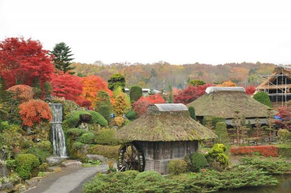 Tour Du Lịch Nhật Bản 6 Ngày 5 Đêm giá rẻ